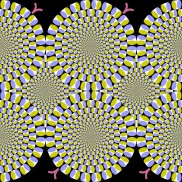 Optical Illusion 05