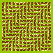 Optical Illusion 07
