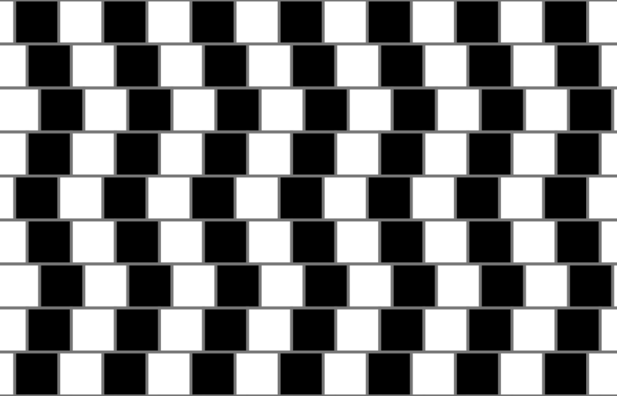 Optical Illusion 13