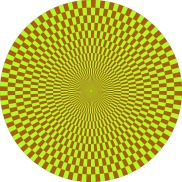 Optical Illusion 28