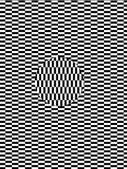 Optical Illusion 29