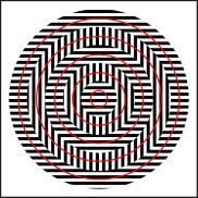 Optical Illusion 36