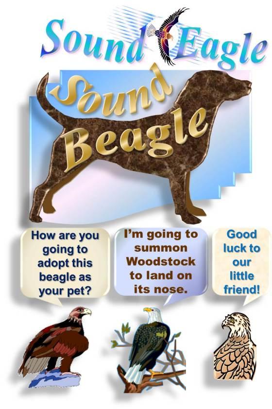 SoundEagle in Taming SoundBeagle