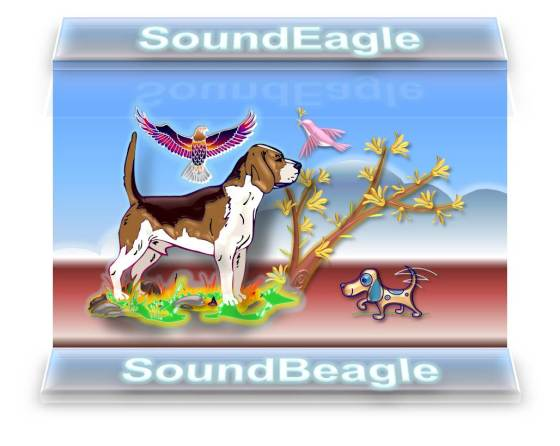 SoundEagle Introducing SoundBeagle