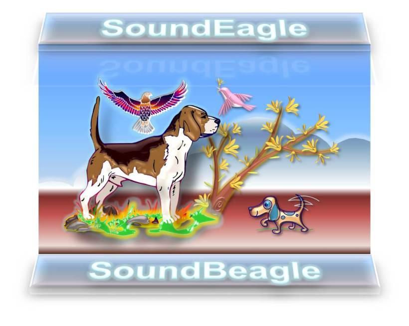 SoundEagle Introducing SoundBeagle