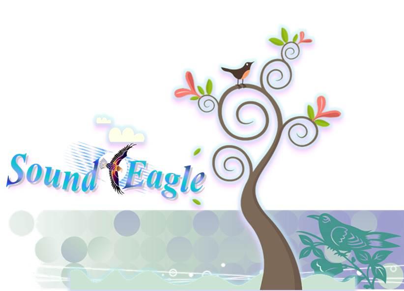 SoundEagle in Art (top half)