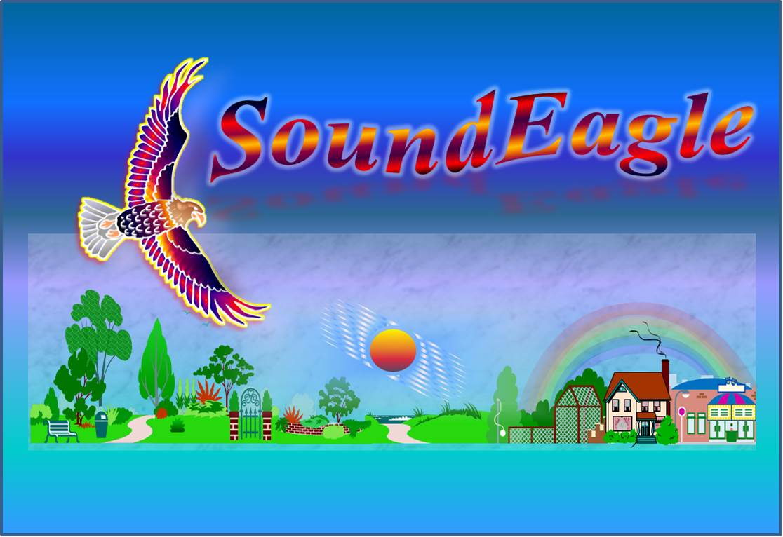 SoundEagle in Sound, Society and Environment