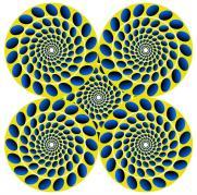 Optical Illusion 43