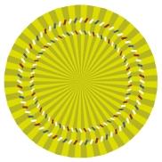 Optical Illusion 55