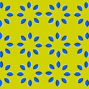 Optical Illusion 66