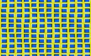 Optical Illusion 67
