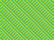 Optical Illusion 70