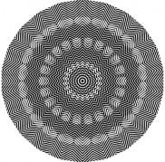 Optical Illusion 81