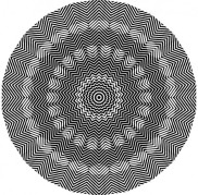 Optical Illusion 81