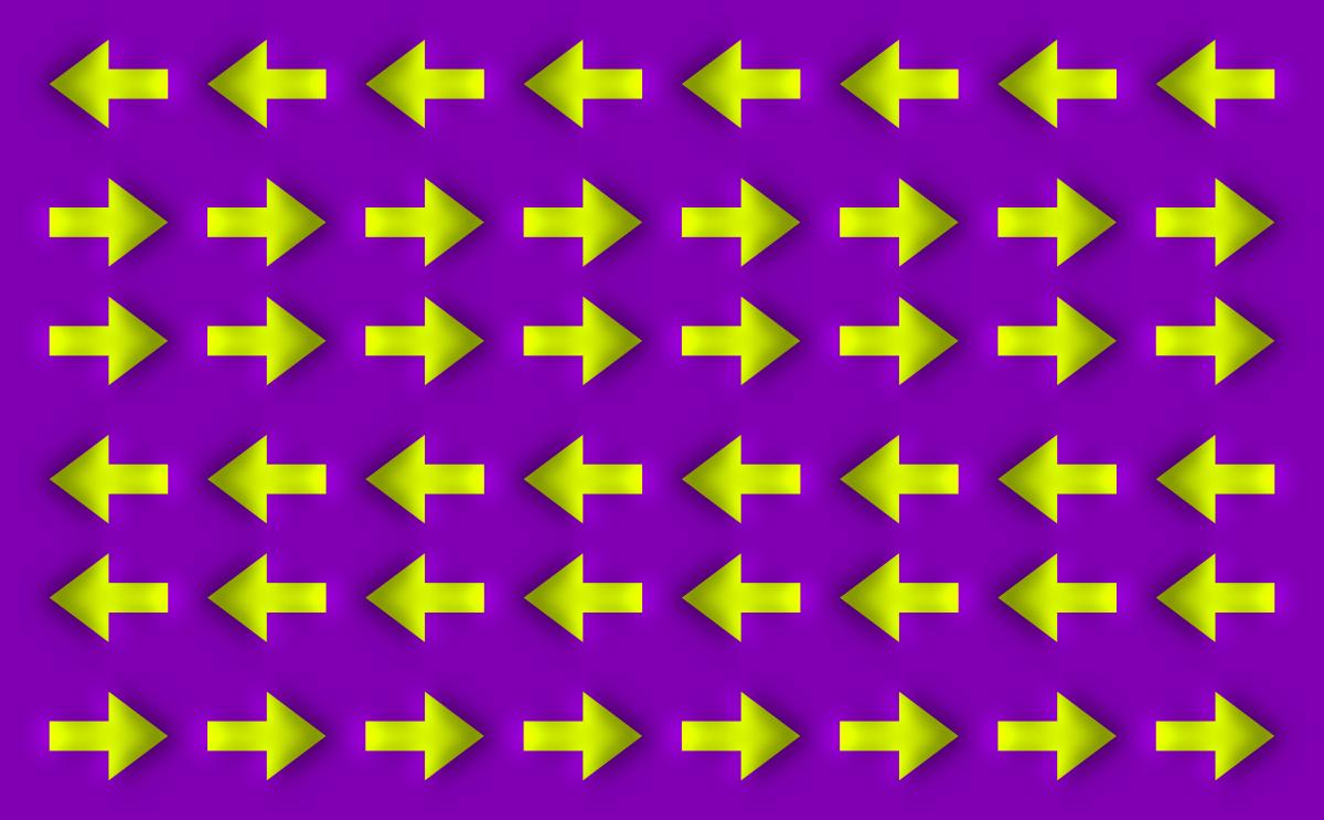 Optical Illusion 83