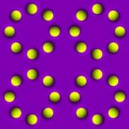 Optical Illusion 84
