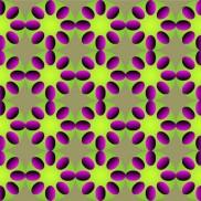 Optical Illusion 86