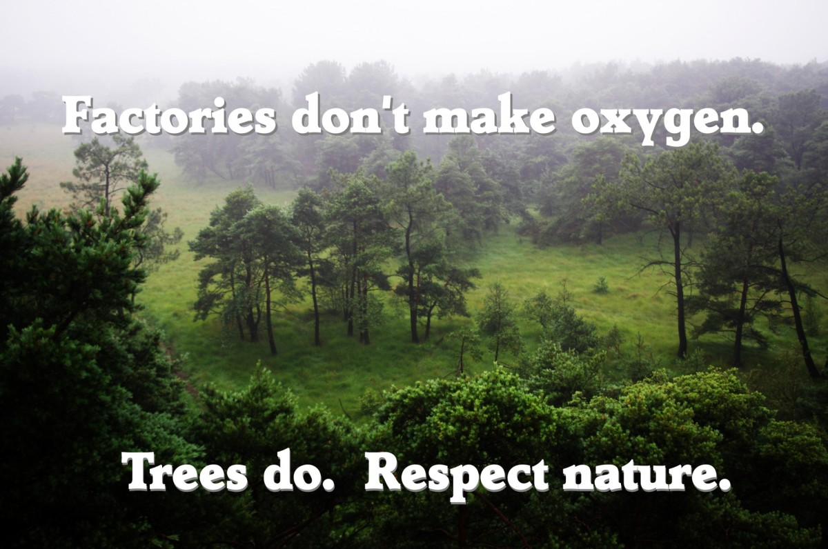 Factories don't make oxygen. Trees do. Respect nature.
