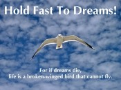 Hold Fast To Dreams!