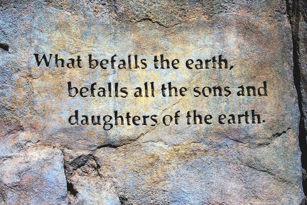 """""""What befalls the earth, befalls all the sons and daughters of the earth."""" ― Ted Perry"""
