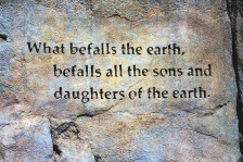 """What befalls the earth, befalls all the sons and daughters of the earth."" ― Ted Perry"