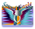 SoundEagle Perch