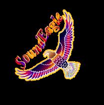 SoundEagle Flying Sideway